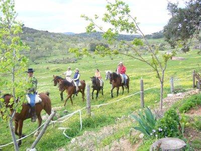Ruta a caballo por Sierra Morena de 1 hora