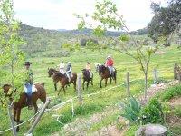 Horse riding tour 1h Sierra Morena