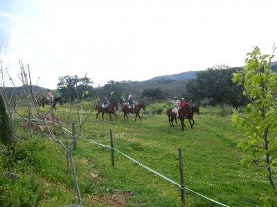 trail on horseback w lodging + breakfast S.Morena