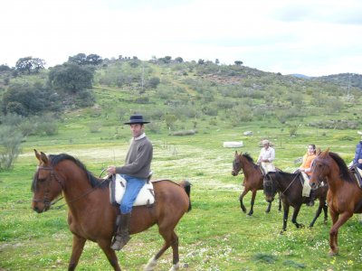 Horseback ride + picnic on Sierra Morena
