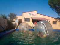 Zorbing in the pool