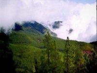 我们穿过La Orotava山谷