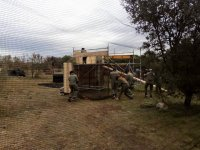 Escenarios de paintball con obstaculos