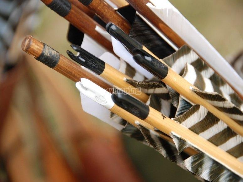 Flechas para el combate