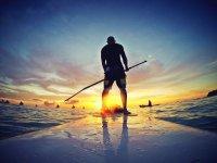 在日落玻冲浪学校标志在加的斯在加的斯