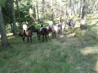 A caballo por el campo