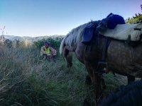 Descansando después de una jornada a caballo