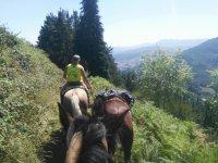 Impresionantes vistas desde el caballo