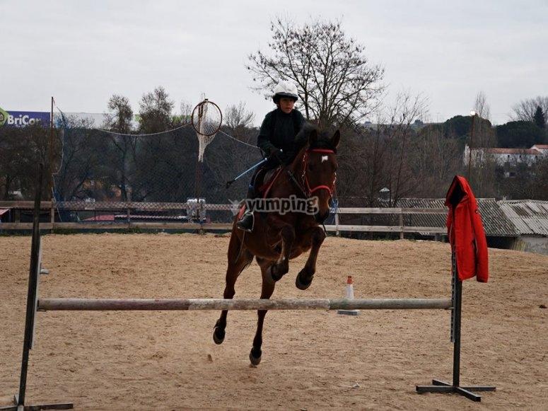 Con los mejores caballos