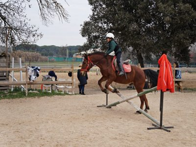 Equitazione a Móstoles per 1 ora