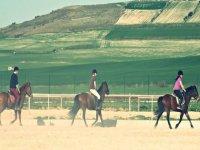 hipica课程中学习主宰马匹