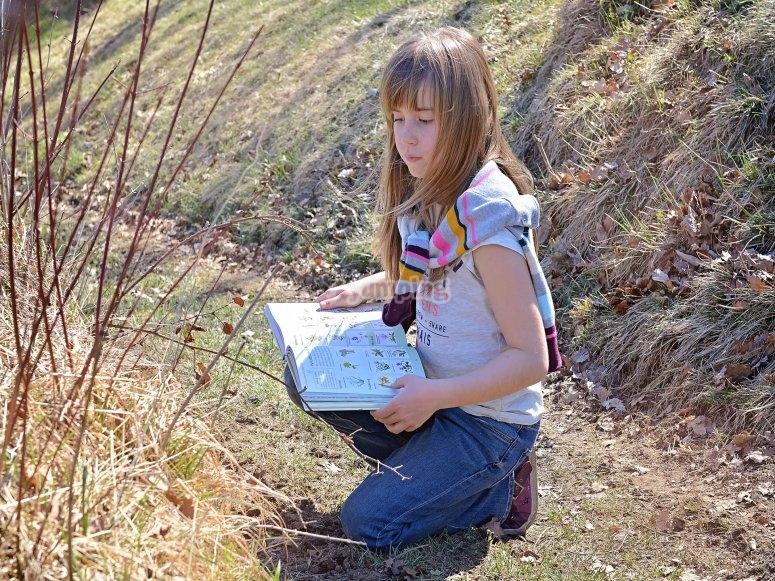 Adquiriendo conocimientos sobre las plantas