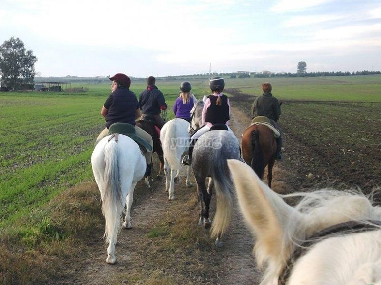 Rutas a caballo por Cordoba
