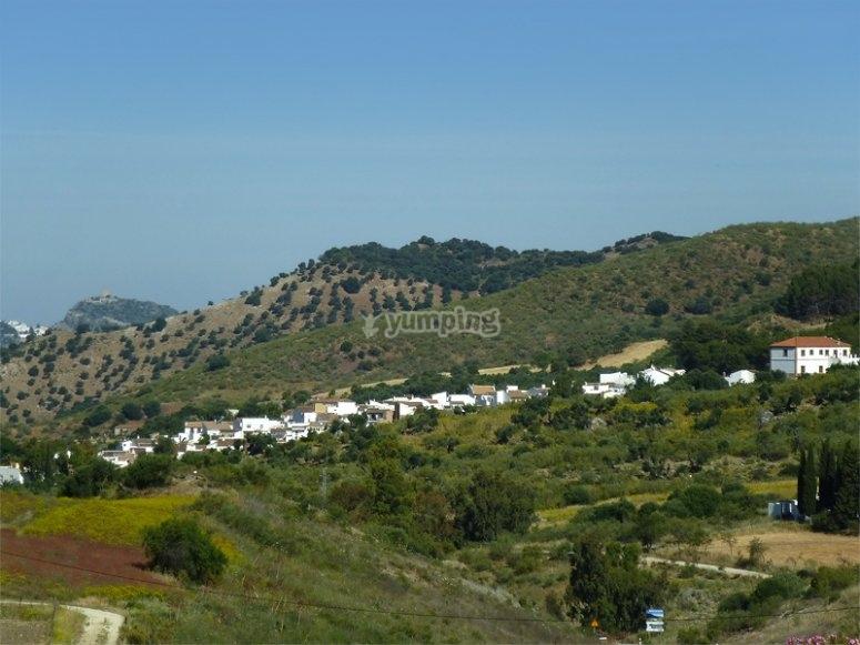 Montecorto, bosques de Malaga