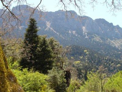 Recorrido en 4x4 Montecorto a Sierra de Grazalema
