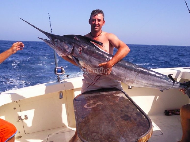Buena pesca en el mar