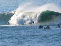 surf con gli amici