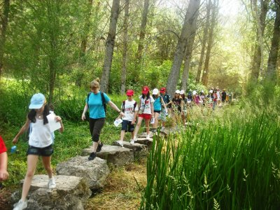 Primary school children camp in Sierra de Cazorla
