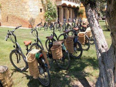 Naturatours Alquiler de Bicicletas
