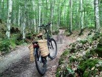 上的自行车停车Garrocha加泰罗尼亚租自行车