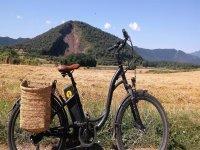 骑自行车的自行车