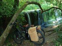 在自行车自行车自然环境