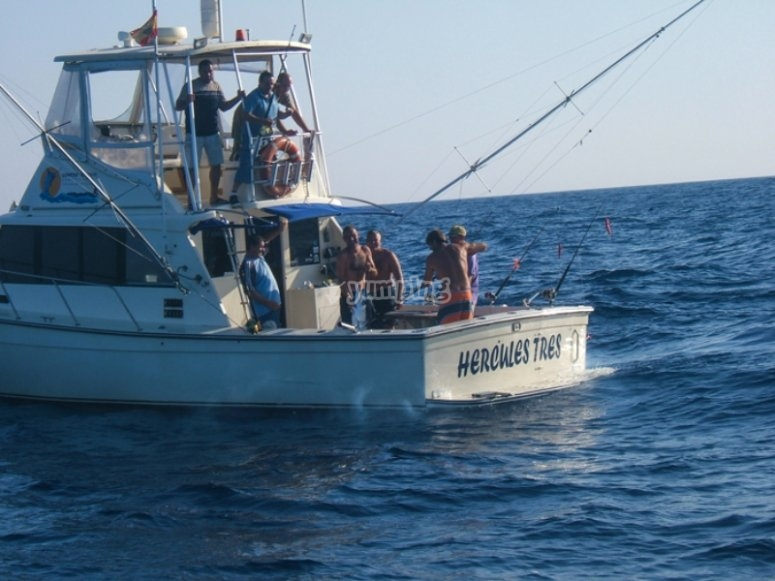 Hercules III,船舒适且装备