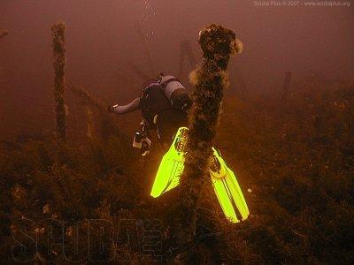 Dive in the Ruta de los Meros, Menorca, 3 hours