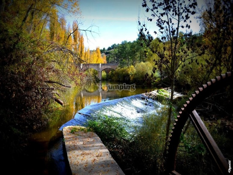 美丽的自然景观