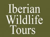 Iberian Wildlife Tours