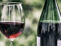 Prueba el vino tinto