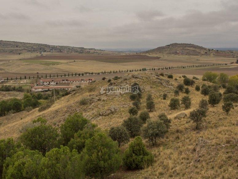 Bosques de Segovia