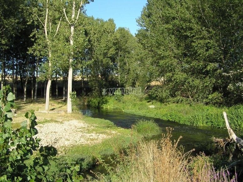 Eresma河的水域