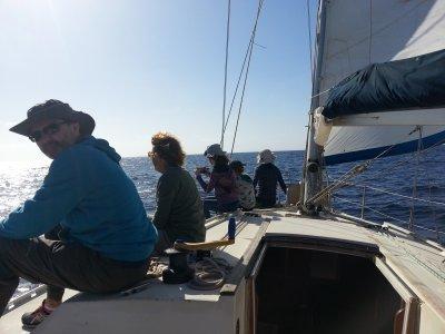 兰萨罗特海岸的航海宪章8小时