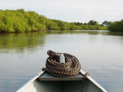 Canoa en el Ebro y visita al Parque Natural 2 h