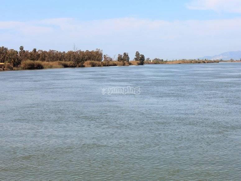 Aguas en calma del rio
