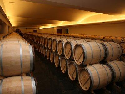 参观Rioja酒庄,享用2道餐