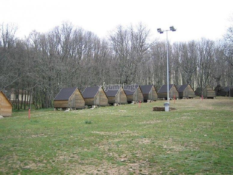 在自然环境中的小木屋