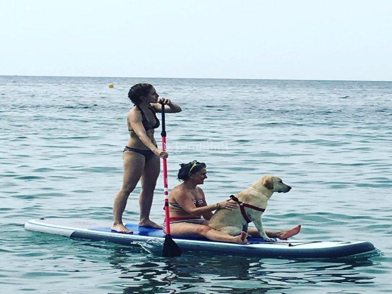 Familia en la travesía paddle surf