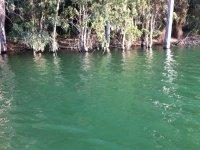 Aguas turquesas en Bornos