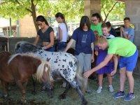 Interactuando con los ponis