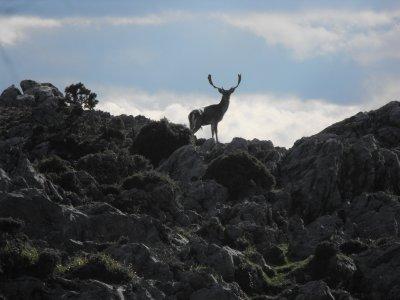 Trekking y alojamiento en Asturias 6 días