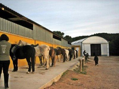 Paseo a caballo en Náquera jinetes experimentados