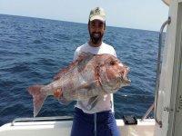 新鲜捕捞的鱼