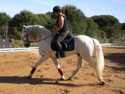 Horse riding trip in Conil de la Frontera
