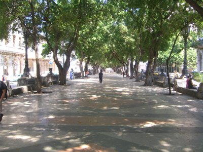Paseo del Prado为残疾人游览