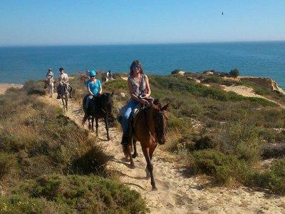 Ruta a caballo en las marismas de Doñana 90 min