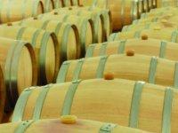 varias barricas de madera