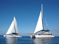 东方双体船双体帆船