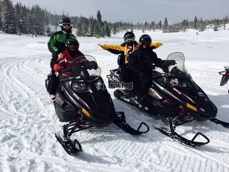 Two-seater snowmobiles